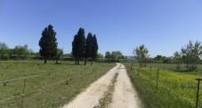 Camping caravaning à Sernhac